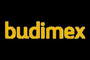 https://odkrywcydiamentow.com.pl/wp-content/uploads/2018/07/budimex-300x200.png